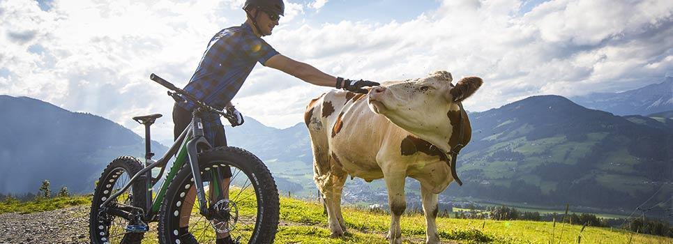 Radsport Körperpflege-Produkte
