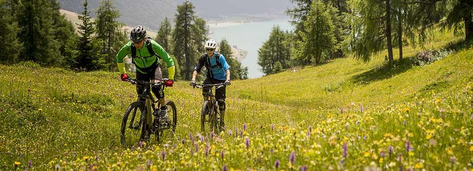 MTB Laufräder und Laufradsätze