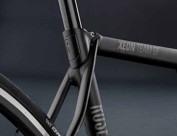 Clean look thanks to an integrated saddle clamp, filigree seat stays and no brake boss