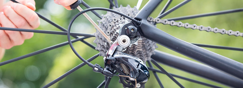 Cassettes for mountain bikes, road bikes, city and touring bikes