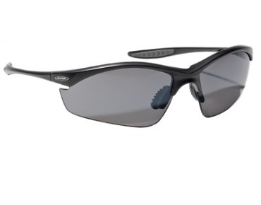 ALPINA TRI EFFECT sports glasses black/black mirror