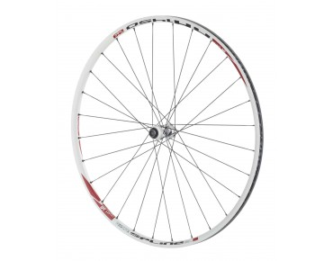 DT Swiss XR 1450 Spline Disc 29