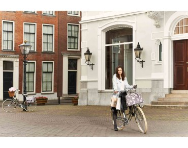 BASIL ELEGANCE CARRY ALL BAG 17 l bicycle bag for women taupe