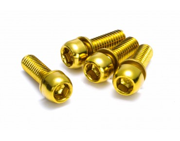 Reverse disc brake bolt set gold