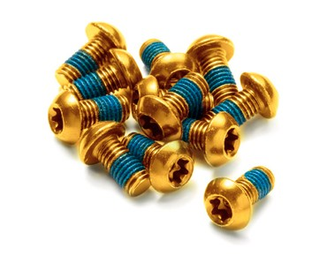 Reverse fixing bolt set gold