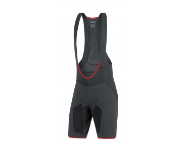 GORE BIKE WEAR ALP-X PRO 2in1 short black
