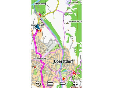 Garmin Topo TransAlpine V4 Pro map