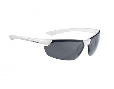 ALPINA DRAFF sports glasses white/black
